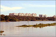 Kengeri Lake Bangalore