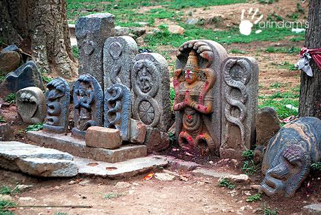 chariot valley yelagiri contact number