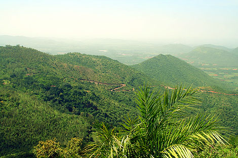 Shivgiri Hills & Wildlife, Kadur taluk of Chikmagalur District.