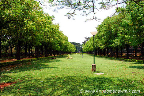 best places to visit in bangalore   | Cubbon Park